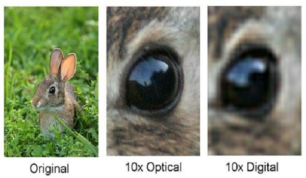 Digital Versus Optical Zoom