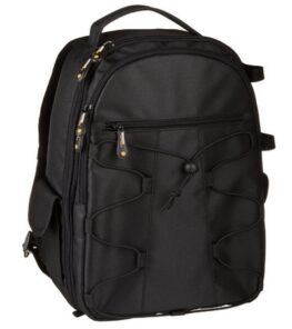 AmazonBasics Backpack For SLR/DSLR Cameras And Accessories